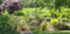 village green.jpg