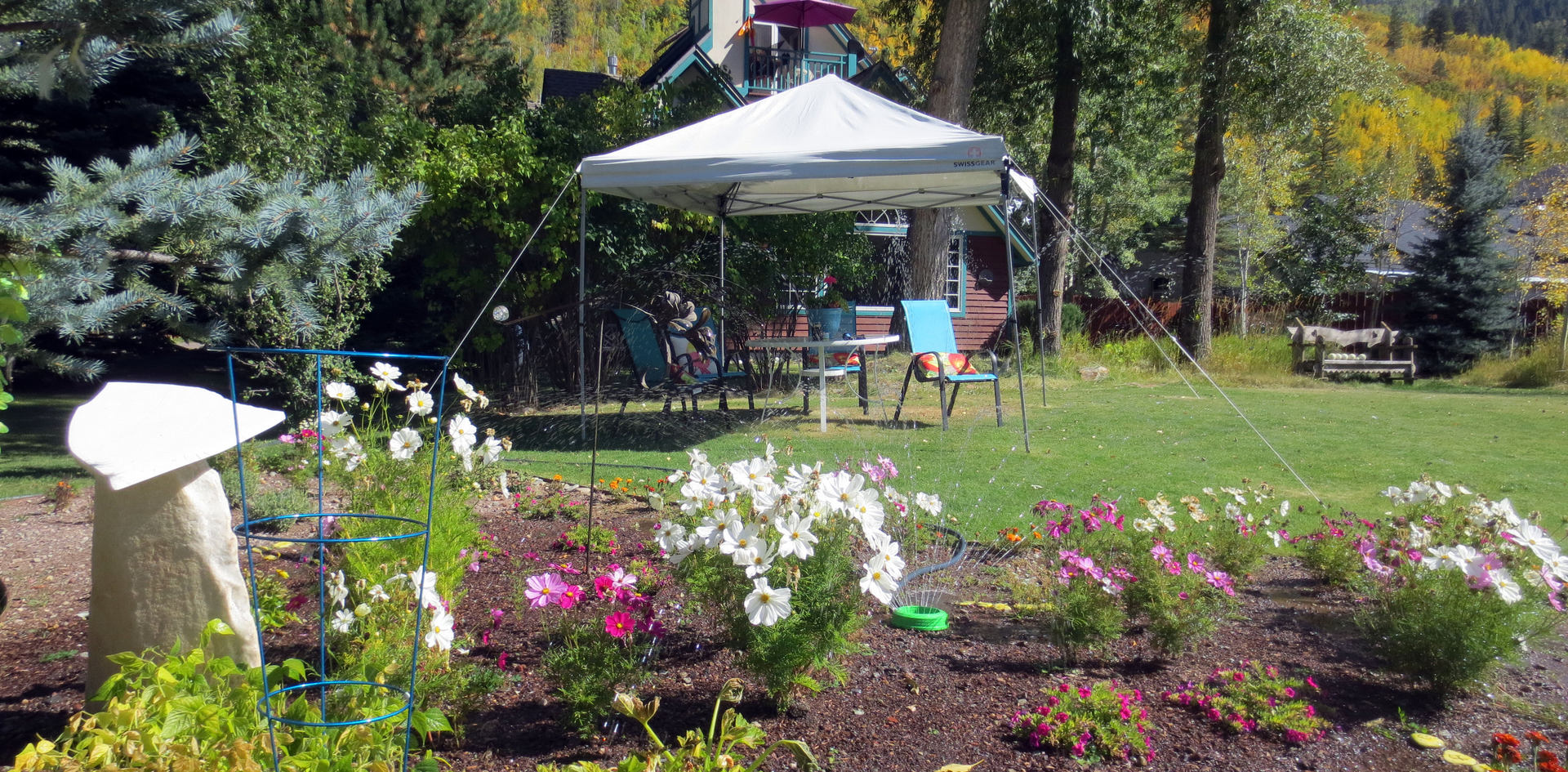 Event tent in the backyard