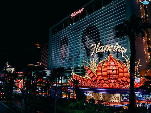 Flamingo-Las-Vegas-Hotel-the-strip-neon-