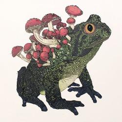 Cordysep Toad