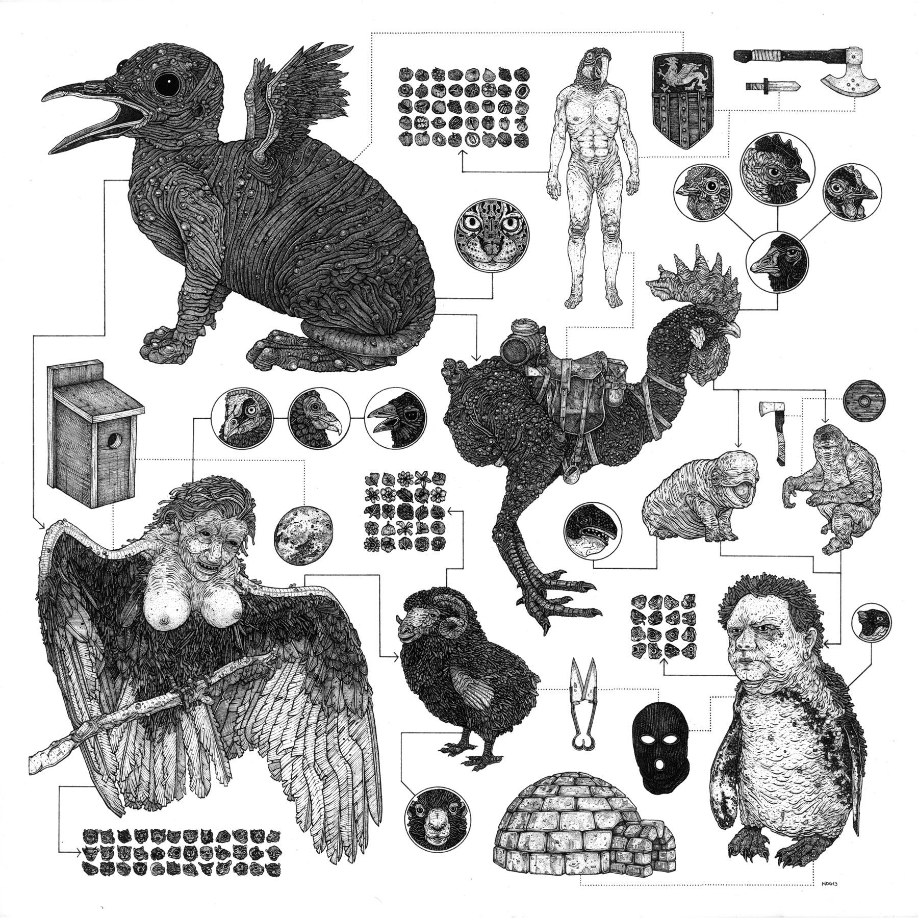 Homo Avian
