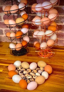 Freeze Dried Eggs