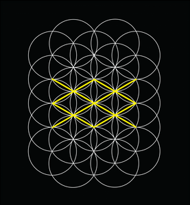 Flower of Life and GAR