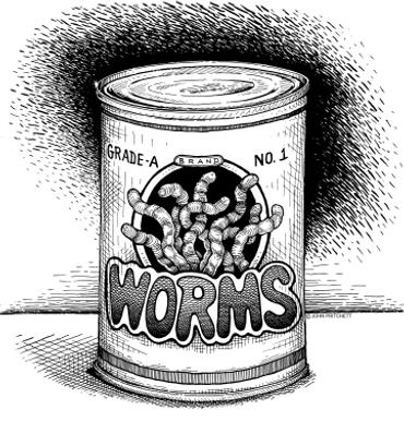 'Can Of Worms...'