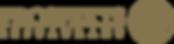P55_logo (1).png