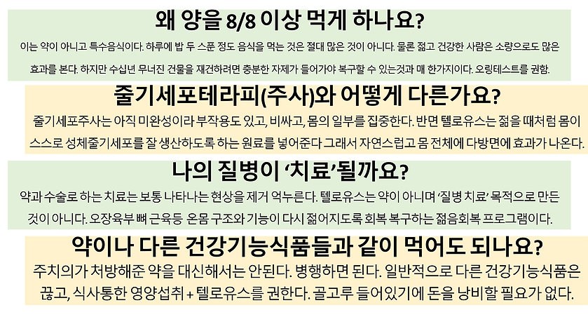 TeloYouth 2.0 한국어 (1)-40 copy.jpg