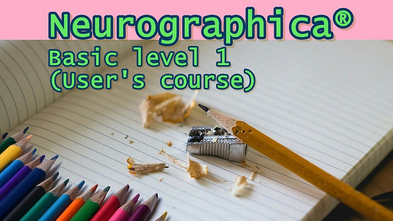 Neurographica®. Basic level 1 (User's course)