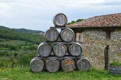 culin vineyard