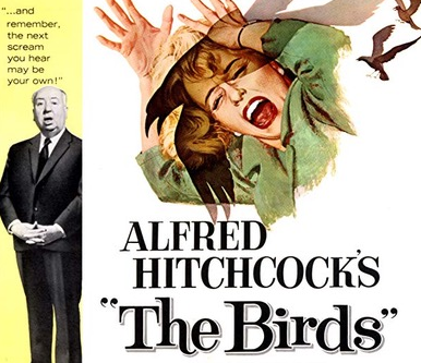 Movie Night - The Birds