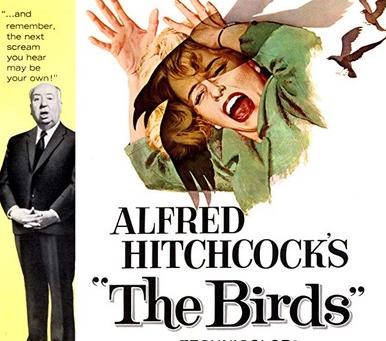 Movie Night - The Birds