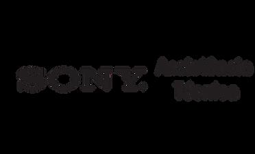 Nexstill Assistência Técnica Sony
