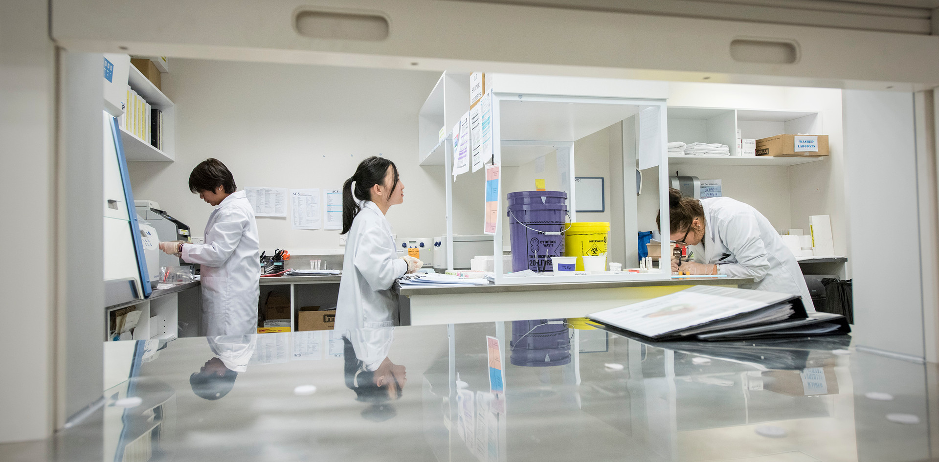 Auckland Clinical Studies Laboratory