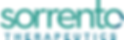 Sorrento Logo.png