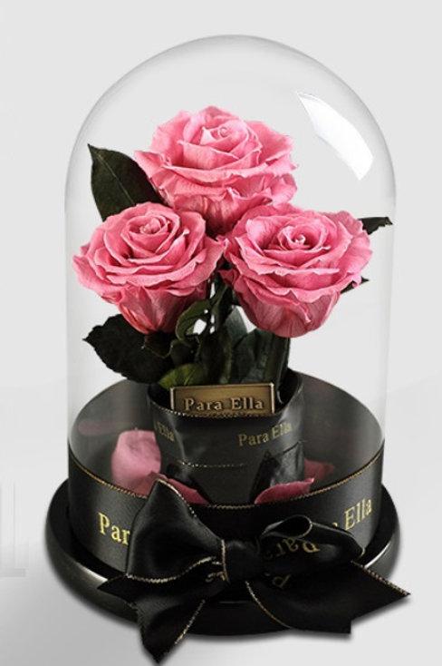 3朵粉紅進口保鮮玫瑰