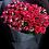 Thumbnail: 情人節 紅小玫瑰花束