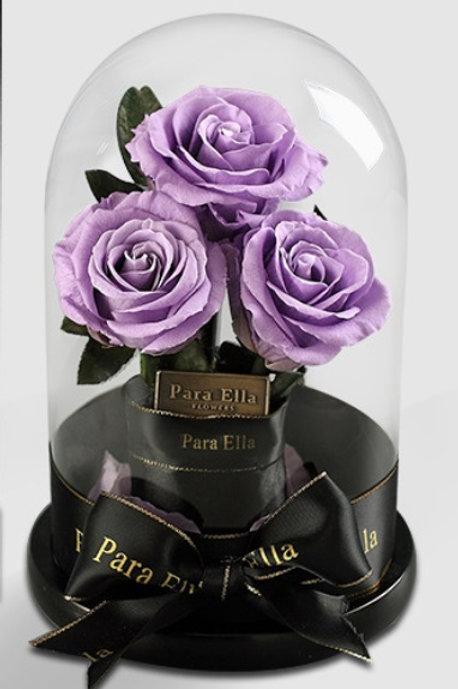 3朵深紫進口保鮮玫瑰
