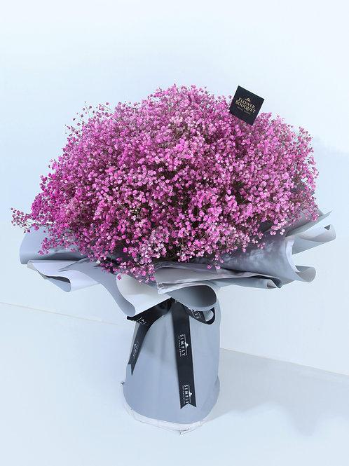 粉紅滿天星 特大花束