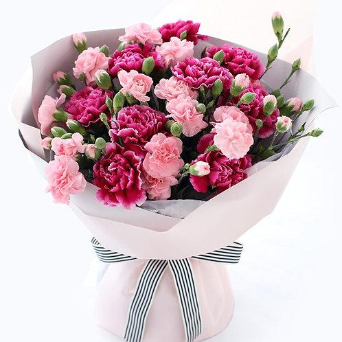 紫紅色康乃馨 + 粉色多頭康乃馨