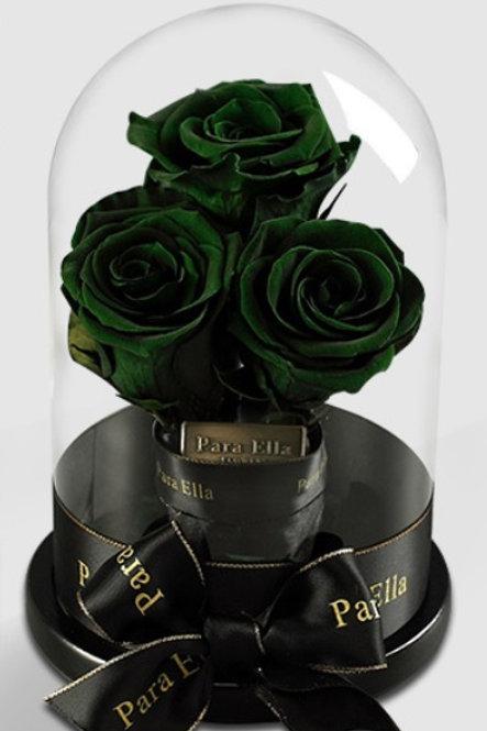 3朵深綠進口保鮮玫瑰