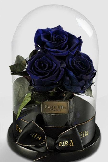 3朵深藍進口保鮮玫瑰
