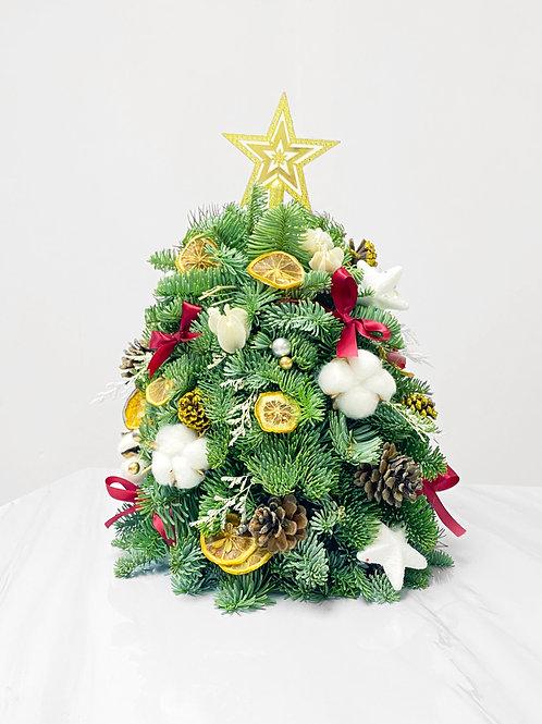 迷你聖誕樹 (新鮮貴族松) 款式A