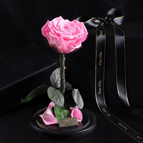 大自然系列 - 單支進口保鮮玫瑰 (粉紅)