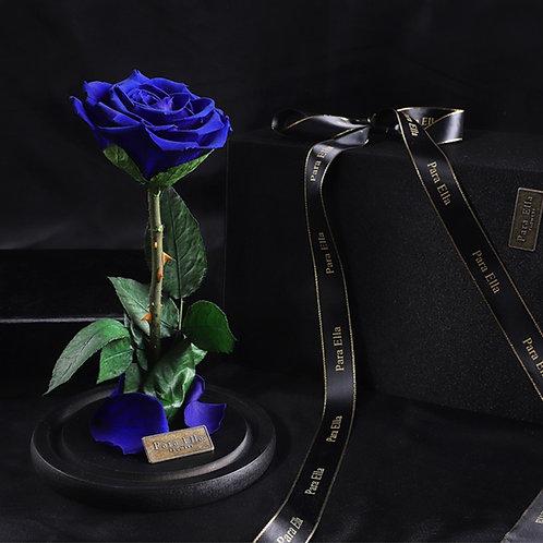 大自然系列 - 單支進口保鮮玫瑰 (深藍)