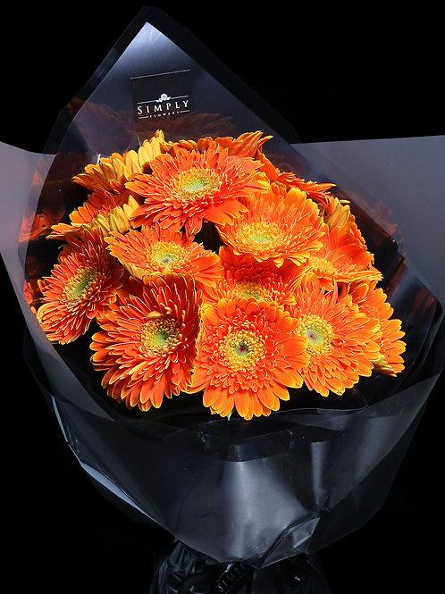橙色太陽花