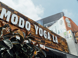"""Modo Yoga East, Echo Park"" Studio Spotlight - LA YOGA Magazine"