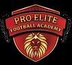 Pro-Elite-Logo-e1518181420706-250x229.pn
