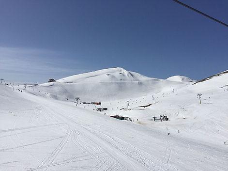 ski-resort-forestsuites-3.jpg