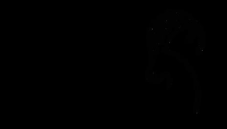 Logo_schwarz_1a.png