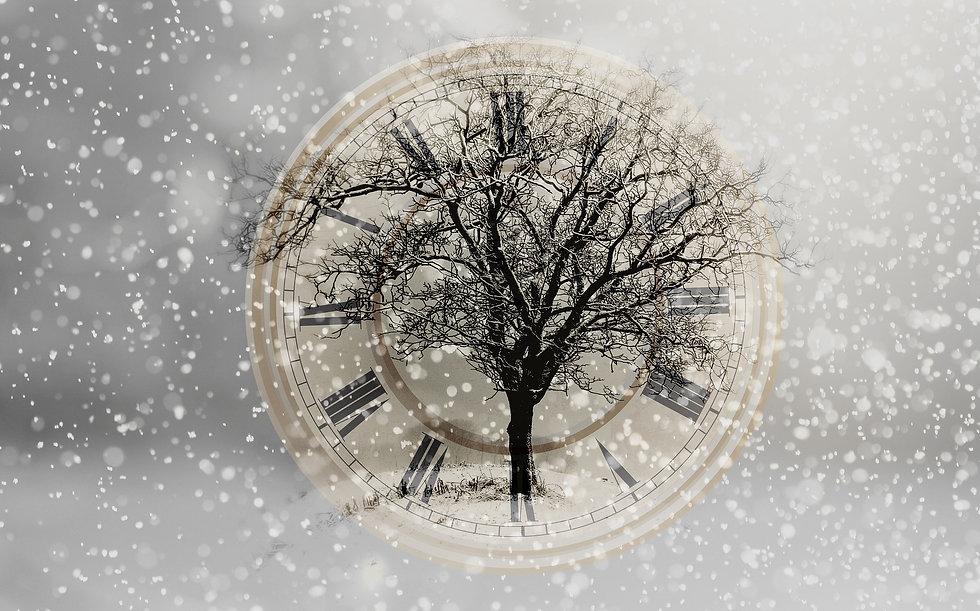 snow-2910676_1920.jpg