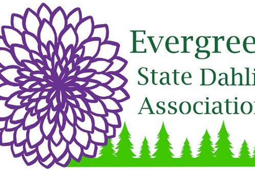 Basic ESDA membership