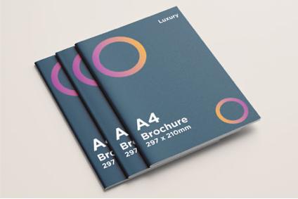 A4 Brochure Luxury