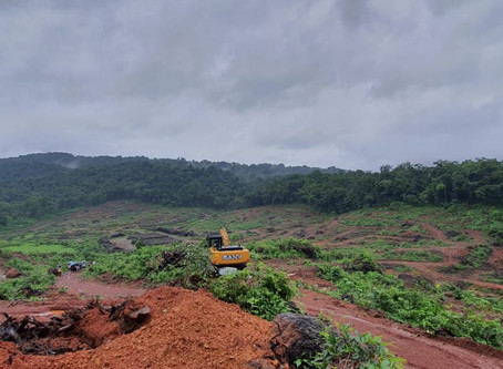 Violating Own Laws, Govt Set To Allow 12 New Western Ghat Projects
