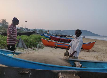 Weakened Law Imperils Jobs, Nature in Indian Port