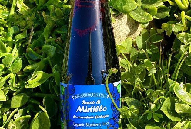 FRUTTI DEL SOLE - SUCCO DI MIRTILLO 330 ml