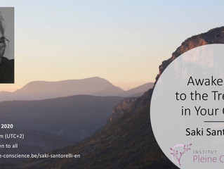 Saki Santorelli Webinar 12 Juni 2020: Awakening to the Treasure in Your Chest