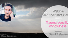 15 Januari 2021 Webinar David Treleaven Trauma-sensitiviteit voor Mindfulness Trainers