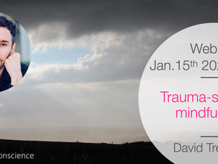 15 Januari 2021 Webinar David Treleaven Trauma-sensitiviteit voor Mindfulness Trainers