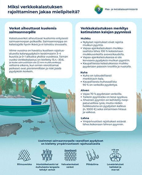 MMM_Saimaannorppa_ja_kalastus-02.jpg
