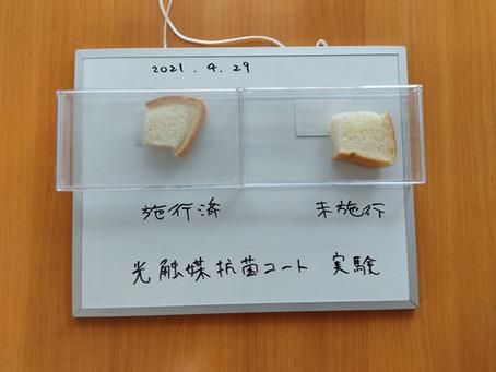 光触媒抗菌コート 食パン実験