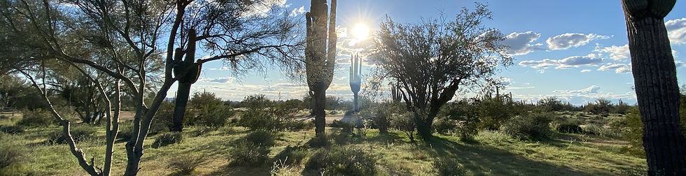 desert-sun.jpg
