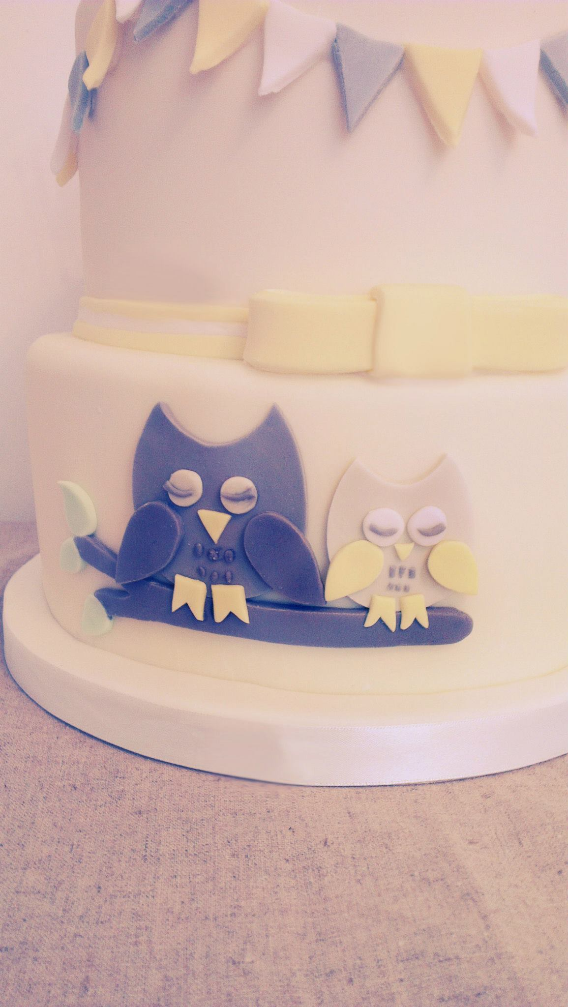 Owl Baby Shower/Christening Cake