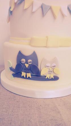 Owl Baby Shower/Christening Cake