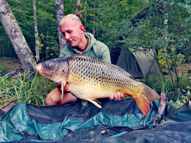 30lb Christmas Common.JPG