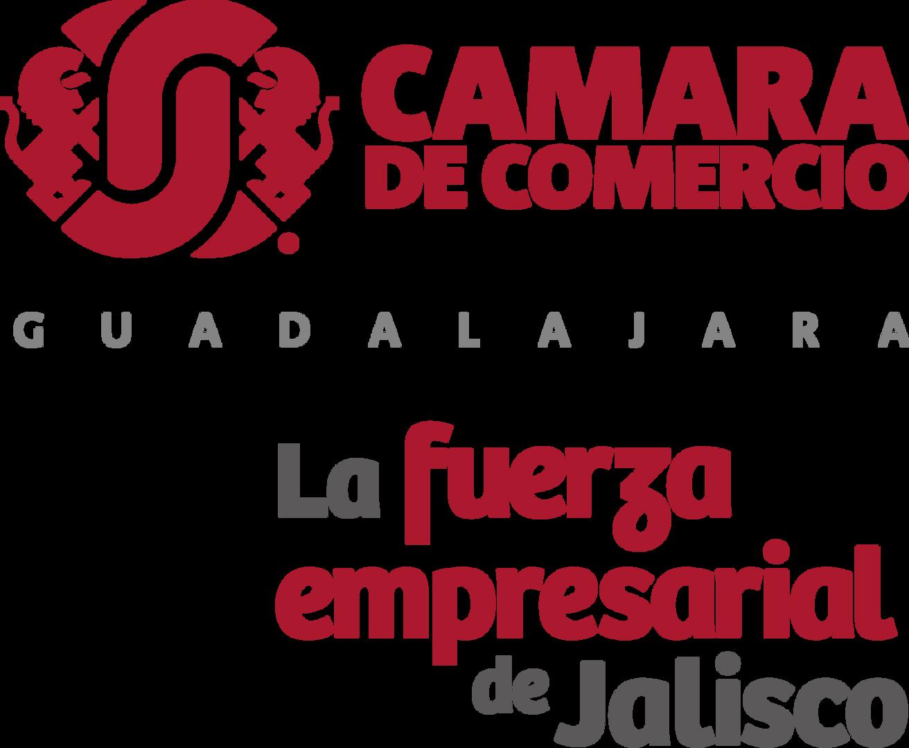 CAMARA-FUERZA.png