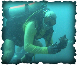 Scuba Diving in Panama City Beach