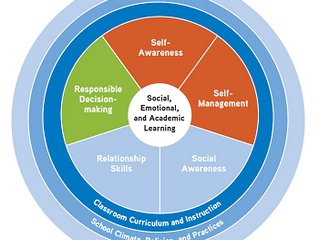 V.9 #1 Social-Emotional Development - Embedding Social Emotional Learning in the Schools